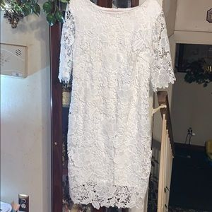 Sz 12 gorgeous lace dress by Madison Leigh
